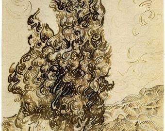Van Gogh Reproduction.  Cypresses, 1889  by Vincent van Gogh, Fine Art Print.