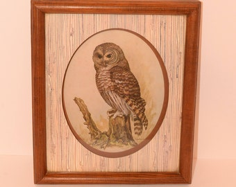 Owl Picture and Frame by E.Rambow