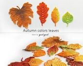 Autumn leaves crochet pattern, Crochet leaf pattern, Crochet applique pattern, Woodland decorations. Aspen leaf, Oak leaf, vine leaf.