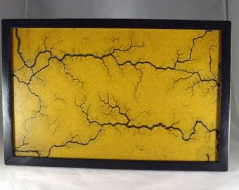 Framed Lichtenberg Wall Decor