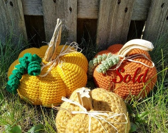 Crochet Pumpkin With Real Stem