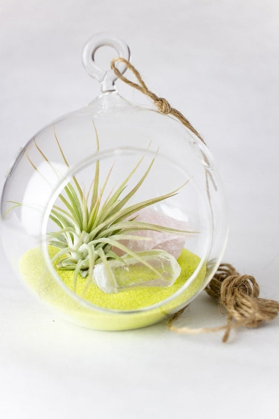 Air Plant, Rose Quartz, Clear Quartz, and Yellow Sand Terrarium Kit || Pink Lemonade || Modern
