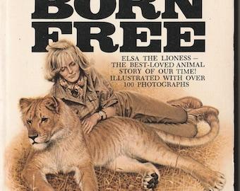 Vintage Born Free Elsa the Lioness Joy Adamson 1970 Paperback