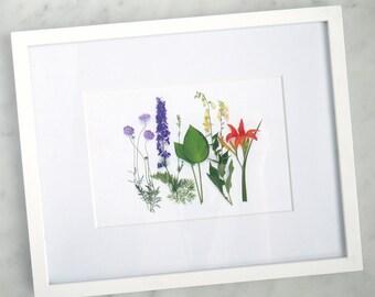 Rainbow of summer garden flowers~ botanical print ~ wall art ~ garden art ~nature art