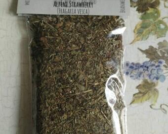 Organic Alpine Strawberry Leaf