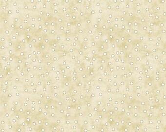 Solid Dot Fabric - Wash Day Blender, Debi Hubbs, Studio E - 3629 40 Pale Green & Cream  - Priced by the Half yard