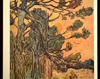 Van Gogh Landscape Wall Art Decor Print Artwork Forest Woods