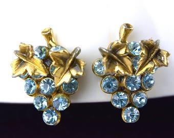 Vintage Grape Cluster Screw Back Earrings Aquamarine Turquoise Blue Topaz Rhinestones Goldtone Metal