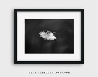 White Feather Floating on Water – 5x7 Print – Black and White Photograph