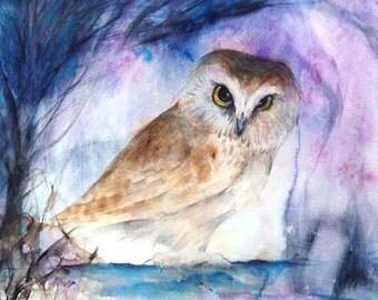 Summer Sale-Owl Original Watercolor Painting Bird Artwork Saw whet Owl 10.8x9 in