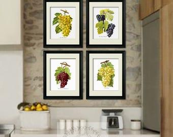 Vineyard decor, Kitchen Wall art Grapes Art set of 4 Prints French wine grapes art Gift for her, housewarming gift, wine cellar decor