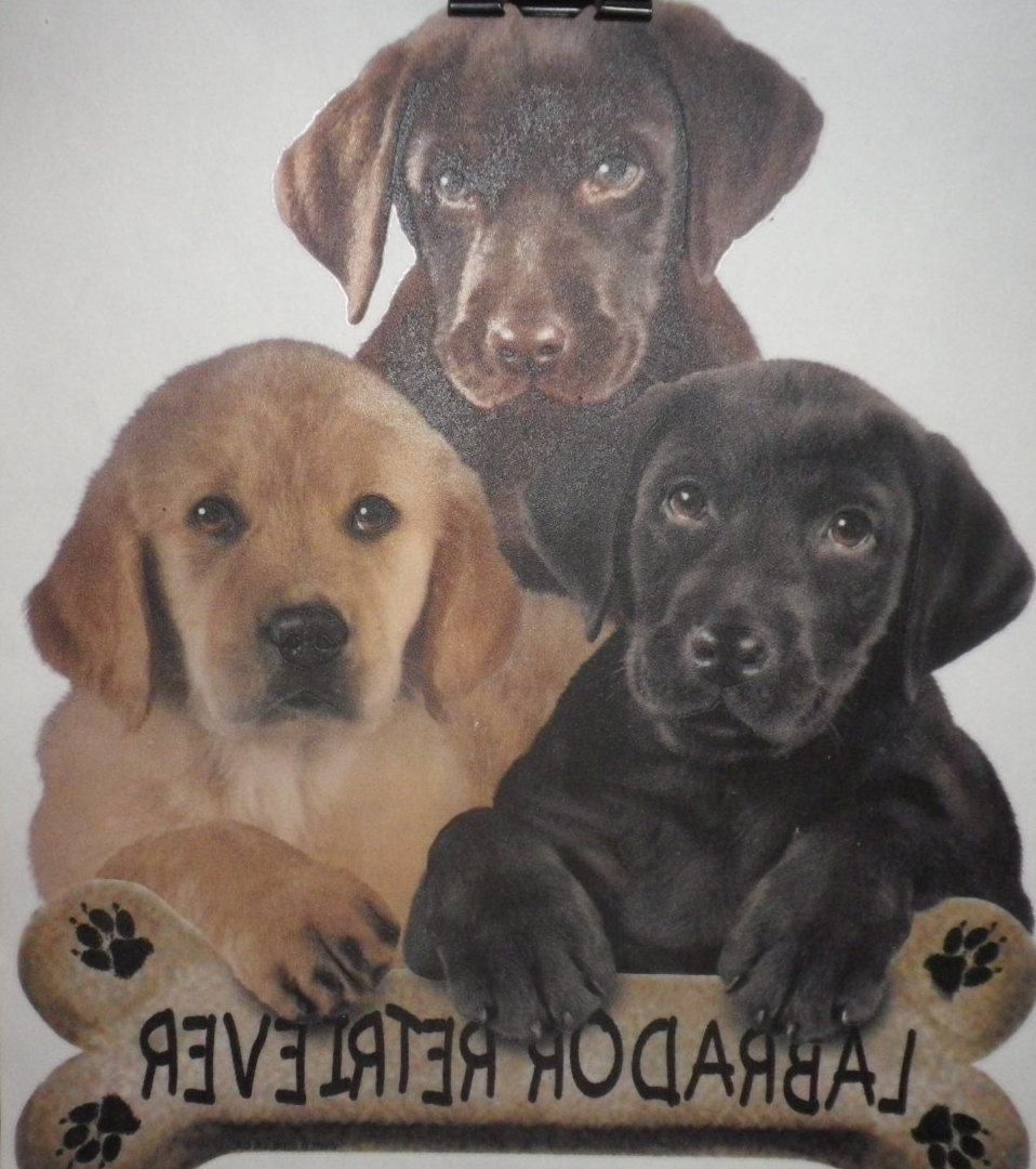 Custom pet picture t shirts dog shirts by naesbargainbasement for Custom pet t shirts