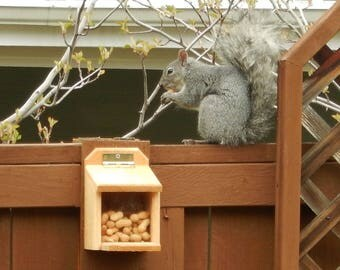 CEDAR SQUIRREL FEEDER