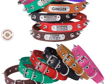 Spiked Leather Dog Collar Personalized Laser Engraved ID Tag Small Large Red Brown Black Green Pitbull AmStaff Bulldog