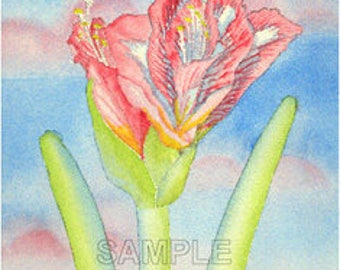 The Sky Flower Watercolor Greeting Card by J. P. Haydock (also available as a print)