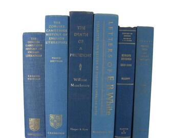 Blue  Vintage  Books , Vintage Wedding Decor, Vintage  Photography Prop , decorative books , old books , Gift for Book Lover