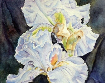 Iris Flowers Original Watercolor Painting matted to 12x16, floral, botanical, purple, blue, white, yellow