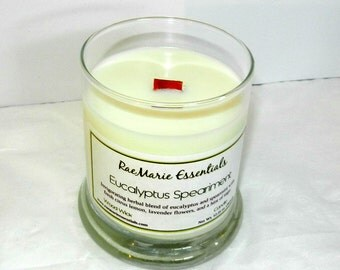 NEW Eucalyptus-Speariment Coconut Wax 9oz Status Jar Wood Wick Candle