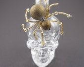Gold beaded spider - Arac...
