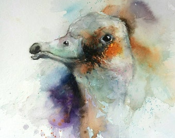 ORiGiNaL (not a print) Watercolour Painting of a goose by Natalie Graham wildlife art original aquarela birds geese