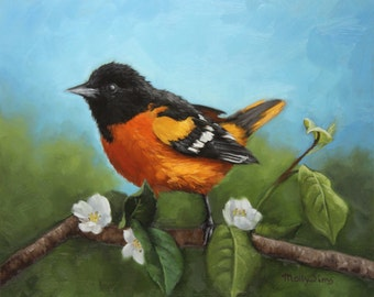 Baltimore Oriole - Maryland Bird - Bird painting - Orange black bird - Open edition print