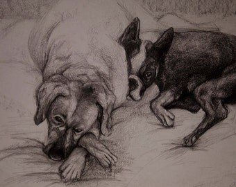 Custom Pet/animal/person/family/friend portrait 14x17