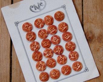 1930's Casein Buttons x 24