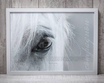 Companion horse POSTER - print image without frame, quote