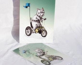 Westie on a Trike card