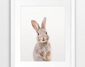 Rabbit Print, Woodland Nursery Decor, Bunny Photo, Woodland Animal, Cute Baby Animal Print, Kids Room Prints, Modern Wall Art, Printable Art