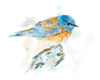 Eastern Bluebird watercolor painting - bird watercolor painting - 5x7 inch print - 0091