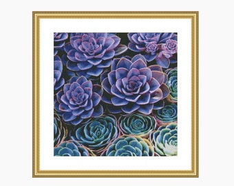 Cross stitch pattern, Modern cross stitch, SUCCULENTS cross stitch chart, Instant download PDF