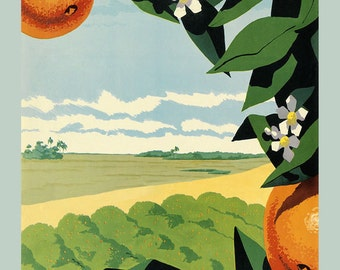 Florida Farm Oranges Fruit American Vintage Poster Repro FREE SHIPPING in USA