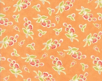 Moda Coney Island Quilt Fabric 1/2 Yard By Fig Tree & Co Orange Sherbert 20282 15