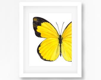 Small Grass Yellow Butterfly Watercolor Fine Art Print