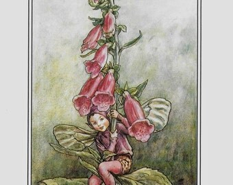 "FOXGLOVE Flower Fairy Fantasy Art 1990 MATTED Vintage Picture 11"" x 14"" Mat Size Home Decor Child's Room Print by Cicely Mary Barker"