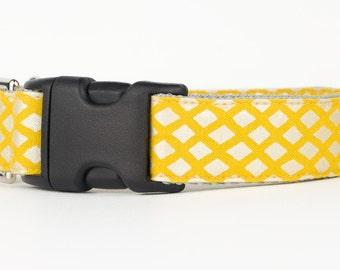 Yellow Designer Dog Collar, Sunshine Trellis Patterned Fabric Dog Collar, Custom Dog Collar, 1 Inch Dog Collar, Dog Accessories