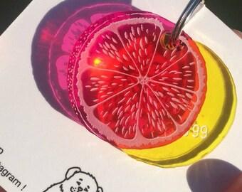 Citrus custom dog or cat tag - ID tag plexiglass orange lemon grapefruit - Custom Pet ID Tags Laser Cut Cat Tag