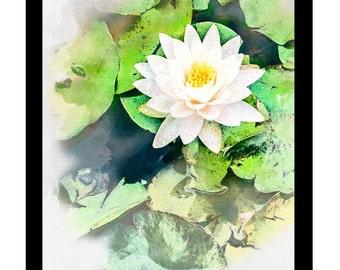 Lily Pond Portrait Watercolour - Canvas/Decal/Vinyl/Poster