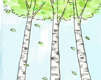 White birch trees