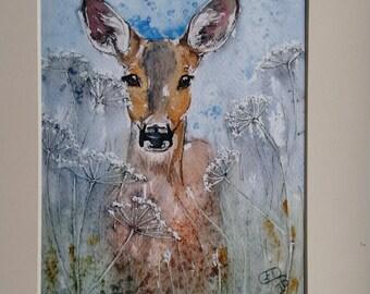 Deer print  limited edition giclee print watercolour wildlife art roe deer, Doe Listening