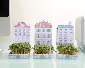Mini Growing Kit - cress card, city townhouse, green gift