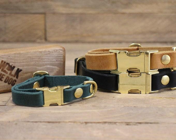 Clip collar, ID address tube, Custom leather collar, Dog collar, Pet gift, Side release buckle collar, XSmall collar, Rustic collar, Green