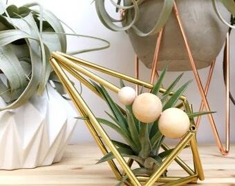 Brass Himmeli Geometric Air Plant Display • Scandinavian • Gold • Tillandsia • Planter • Scandi • Diamond • Wedding • Plants • Shelf • Desk
