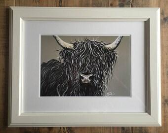Little Black Highland Framed or Mounted print