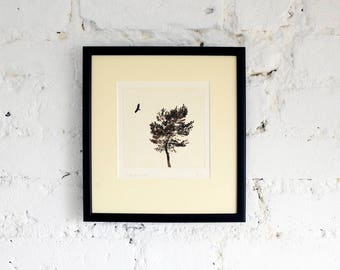 Framed original etching: 'Studland', hand-printed from a solar plate.