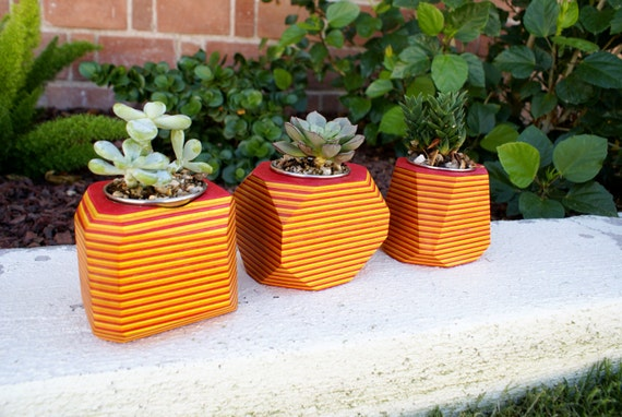 Sunrise Wood Geometric Succulent Planter
