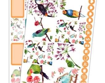 Mini kit - Bright and beautiful birds