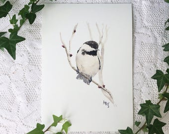 A5 Chickadee on budding branch