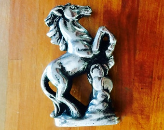 Polished Wild Horse